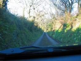 driving England's country roads and hedgerows