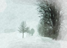 Snowstorm, Frog Hollow