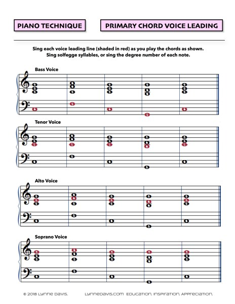 Primary Chord Voice Leading Lines