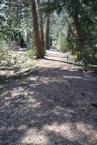 Longwood Gardens March 29 2017 (15) (683x1024)