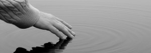 A hand gently touches the water, leaving ripples in the surface of a pond.