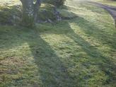 Cedar Hill Golf Course, Victoria