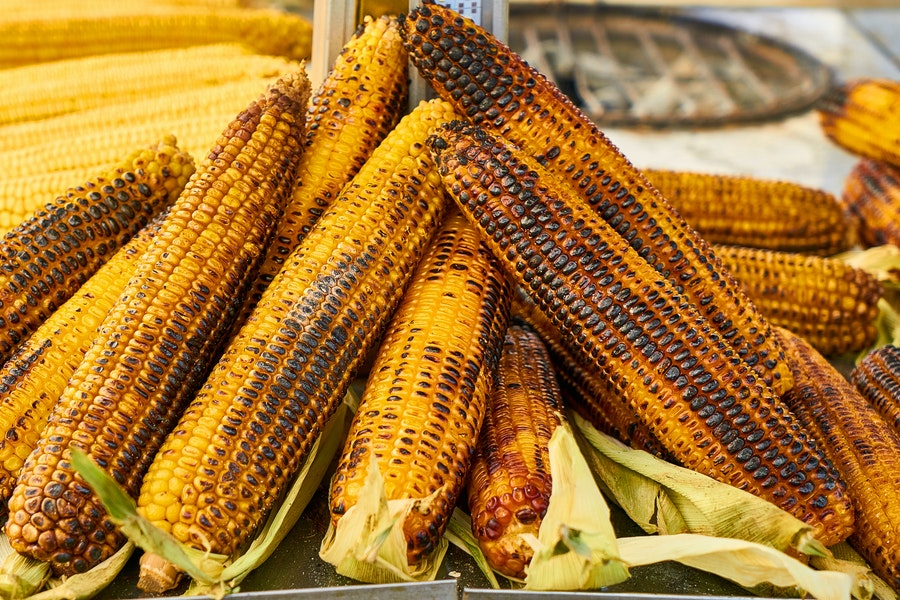 ears of corn charred from grilling