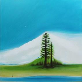 Plateau Landscape Contemporary Artist Lynn Farwell Courtenay B.C.