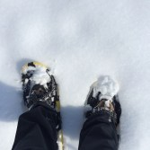 Snowshoeing at Waukewan Highlands Community Park, Meredith NH