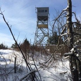 Forest fire tower atop Mt. Belknap. I didn't climb the tower, just walked under it.
