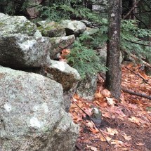 Here, the trail passes through an opening in a stone wall.
