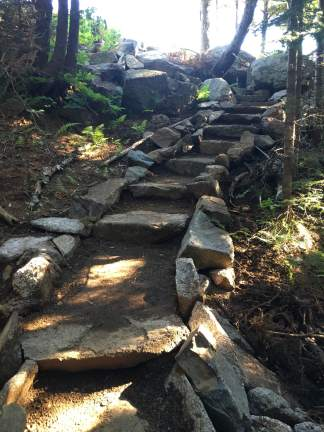 BRATTS also recently added these steps, just above the set shown in the previous photo. So much of an improvement since I hiked this section back in March/April!