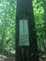Opposite the conservation easement sign was the state forest boundary sign.