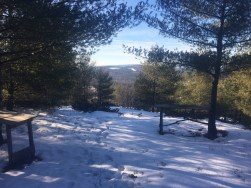 """The """"picnic area"""" on the upper half of the blue trail."""