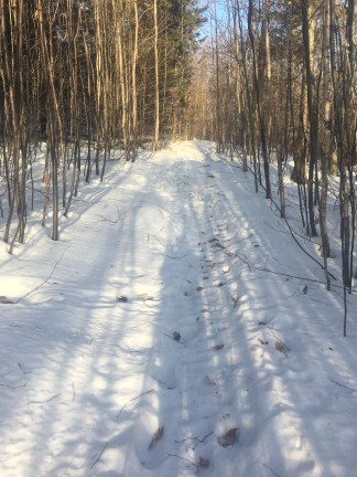 I was surprised to find there was still plenty of snow on the trails. And it was well packed, so snowshoes were not needed at all.