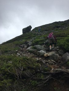 After passing through another wooded section, we continue up the trail to Glen Boulder.