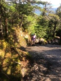 On the way to North Kinsman on the Kinsman Ridge trail.