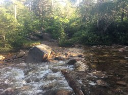 One of several water crossings on the hike. Fast-flowing water and no doubt a little deeper than usual.