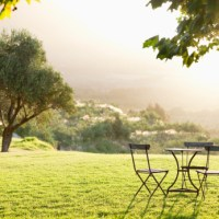 Empty table on green grass