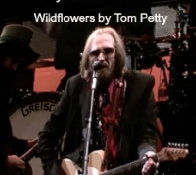 Song - Wildflowers by Tom Petty #2