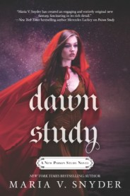 dawn-study2