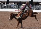 bronco-riding-7
