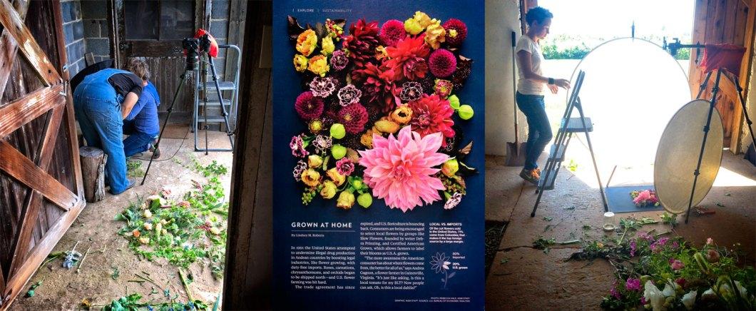 Flower News
