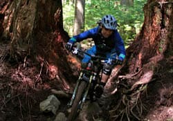 Mountain biking in Lynn Valley, North Vancouver