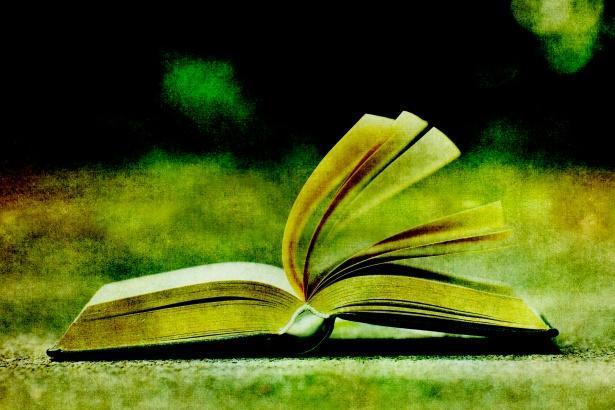 open book flap copy lynsey g