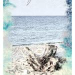 Driftwood – The Ocean Oracle by Lyn Thurman