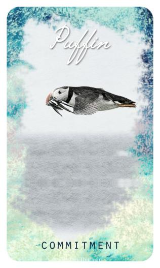 Puffin - The Ocean Oracle by Lyn Thurman