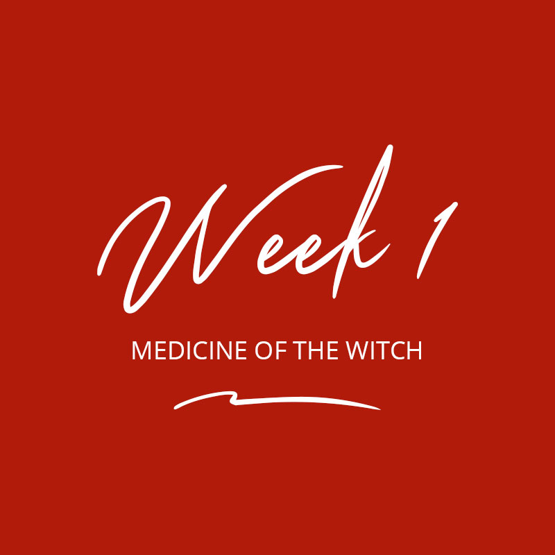 Healing the Witch Wound - Week 1 - Medicine of the Witch