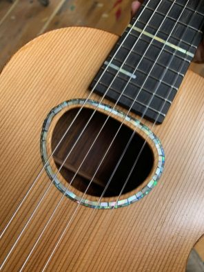Mother of pearl fret markers and rosette with abalone