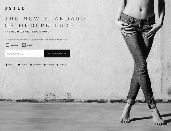 DSTLD in 45 Modern Minimal Websites
