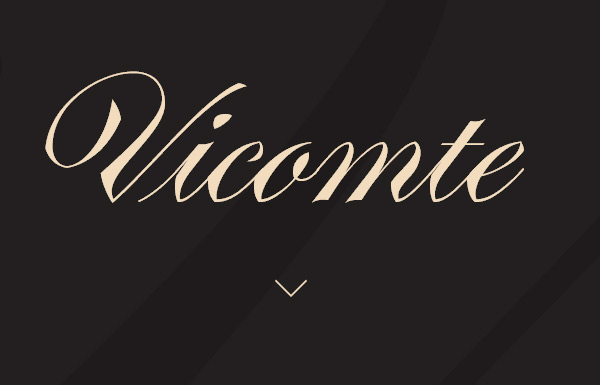 Vicomte Font in 45 Modern Minimal Websites