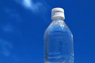ペットボトル水槽で簡単生き物飼育、作り方と立ち上げ、管理の仕方