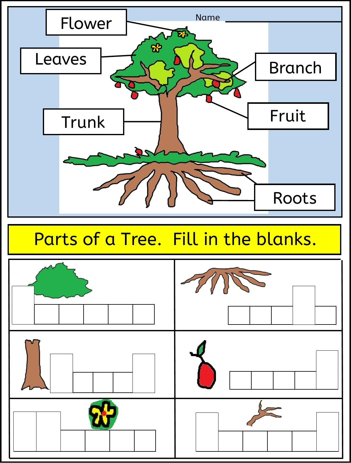 Trees And Worksheet