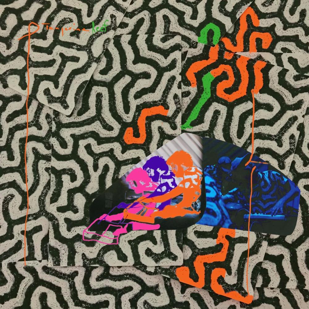 Tangerine Reef Album