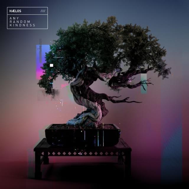 Hælos - Any Random Kindness (Album Lyrics)