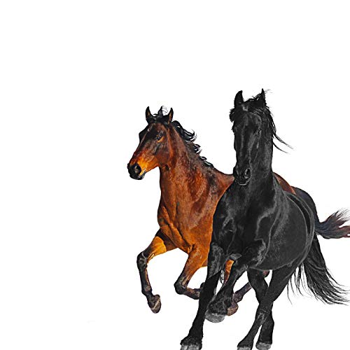 Old Town Road Remix Lil Nas X