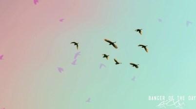 mike. - 2 birds Lyrics