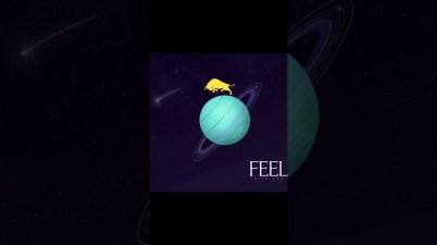 Rita Pam - Feel Lyrics