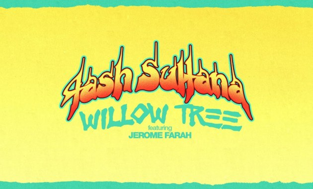 Tash Sultana - Willow Tree Lyrics