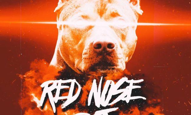 Yn Jay - Red Nose Pit Lyrics