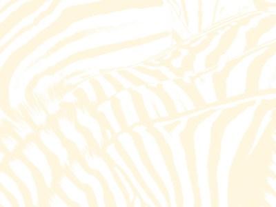 Beach House - Zebra Lyrics