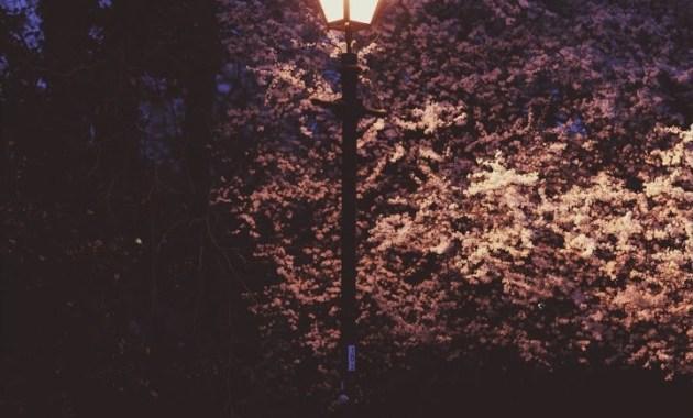 Conor Maynard - Crowded Room Lyrics
