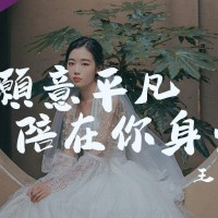 我願意平凡的陪在你身旁 Pinyin Lyrics