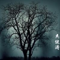 小行囊 Pinyin Lyrics And English Translation