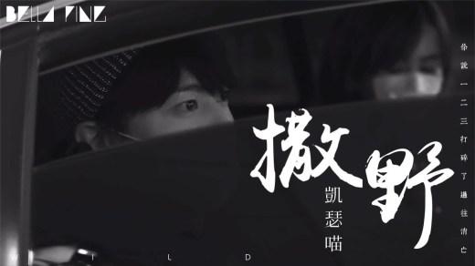 撒野 Pinyin Lyrics And English Translation