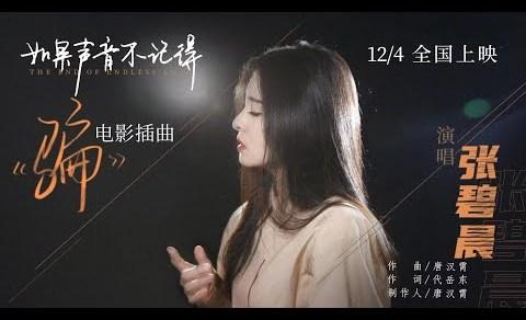 騙 Pinyin Lyrics And English Translation