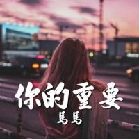 你的重要 Pinyin Lyrics And English Translation