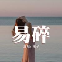 易碎 Pinyin Lyrics And English Translation