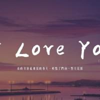 I Love You Pinyin Lyrics And English Translation