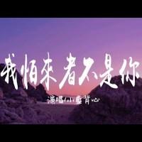 Wo Pa Lai Zhe Bu Shi Ni Pinyin Lyrics